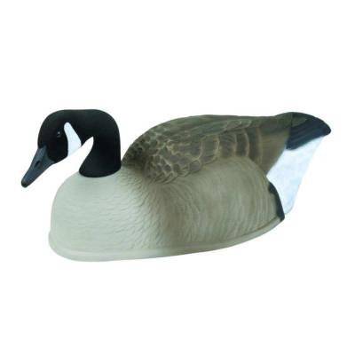 MASTERS CANADA MTY MAG SHELL GOOSE 6PK