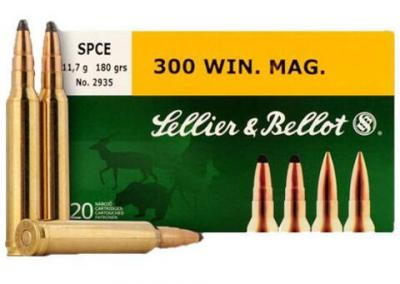 CASE OF 10 RIFLE 308 WIN 180GR NP 20RD/BX